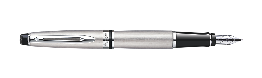 Waterman Expert Stainless Steel CT